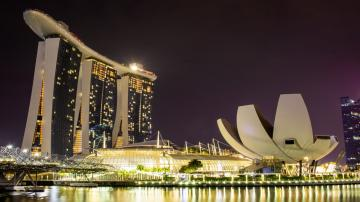 The Curious Case of Singapore